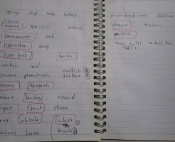 charadesから学んだ英単語:タイプチ英語留学体験